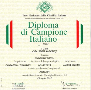 diploma ora enci 2012