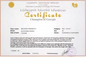 campione georgia